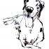 pim_big-dog-lying