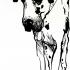 pim_big_small_dogs