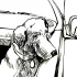 pim_dog_car_window