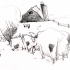 pencilweb_cows_and_barn2