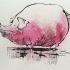 wcm-red-speckled-pig