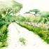 wcm-road-pasture-green