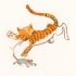wcweb_abc_cat_chasing_mouse2