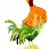 wcweb_abc_proud_rooster2