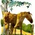 wcweb_abc_twin_horses2