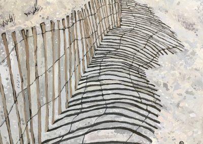 Sand Fence Shadow 8 x 10